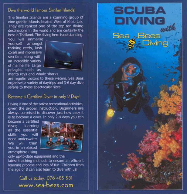 Sea Bees Diving